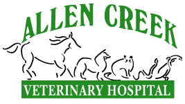 Allen Creek Veterinary Hospital